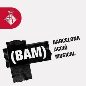 Cartel BAM 2017
