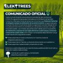 Cartel Elektrees Festival 2020