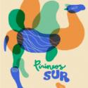 Logo Pirineos Sur 2017
