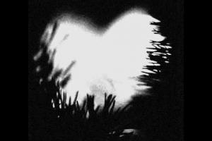 Safyre - I will always love you (Kaze Remix)