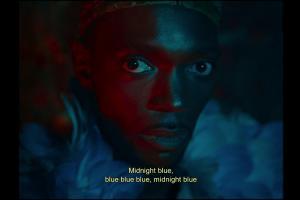 Peau de Chagrin / Bleu de Nuit