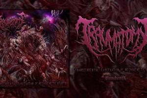 Trascendental Evisceration Of Necrogenetic Beast