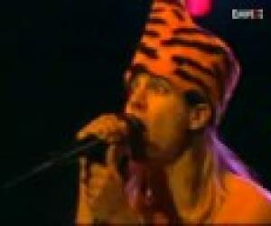 Red Hot Chili Peppers - Jungle Man