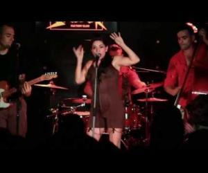 Flamingo Tours - Clap your fingers