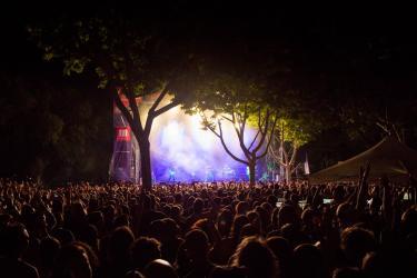Festival de los Sentidos 2019