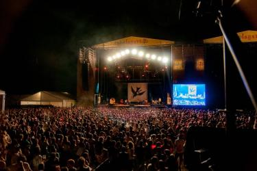 Rabolagartija Festival