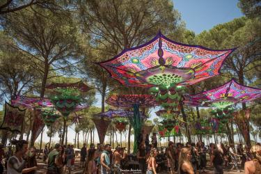 Transition Festival 2020