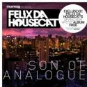 Son of analogue (2011)
